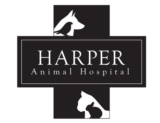 Harper Animal Hospital
